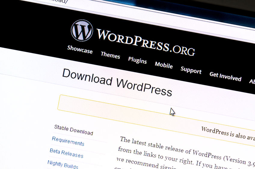 What is the Difference Between WordPress Posts & Pages?